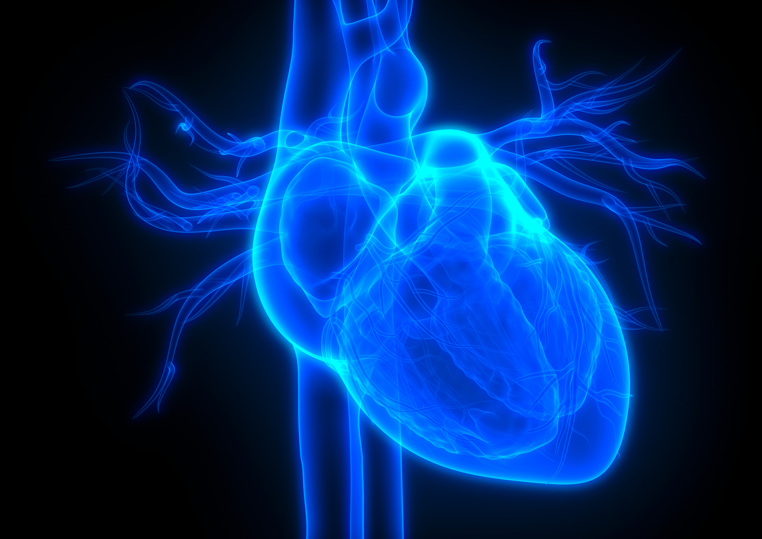 Experts urge national focus on heart health