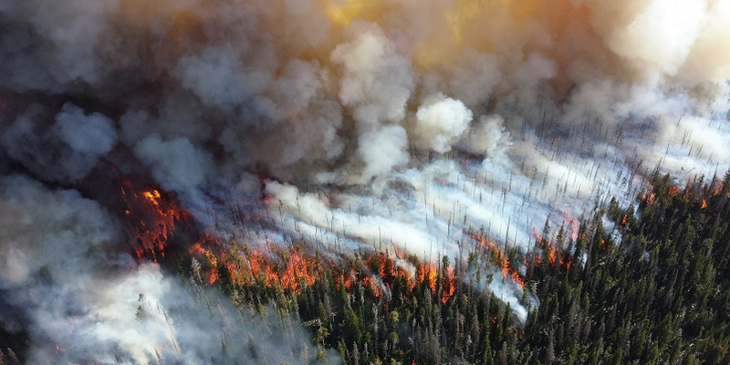 The underestimated cooling effect on the planet from historic fires