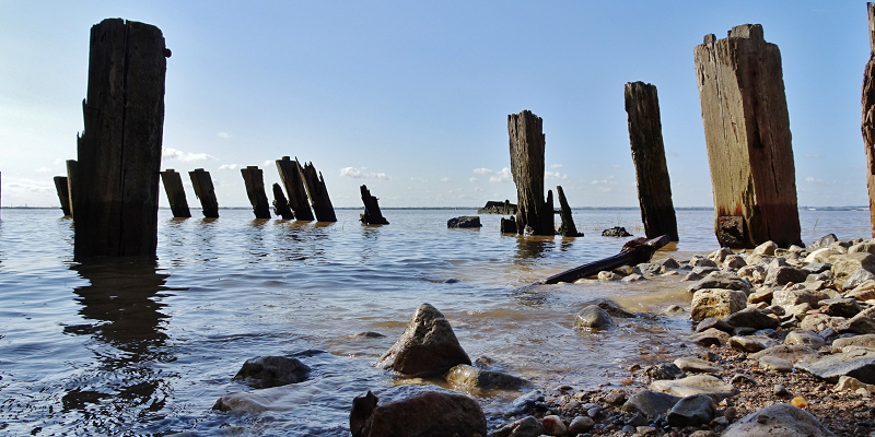 High levels of pharmaceuticals in the Humber estuary