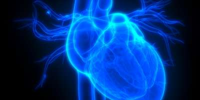 Experts urge national focus on heart health.