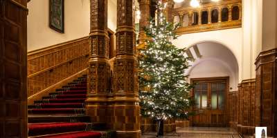 Great hall xmas tree