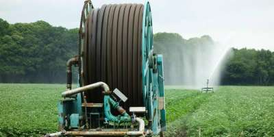 Picture of irrigation
