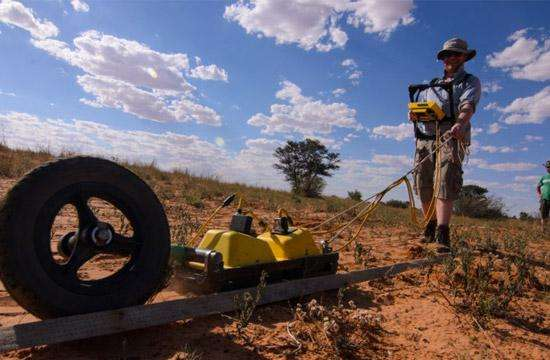 Mapping animal burrows with geophysics